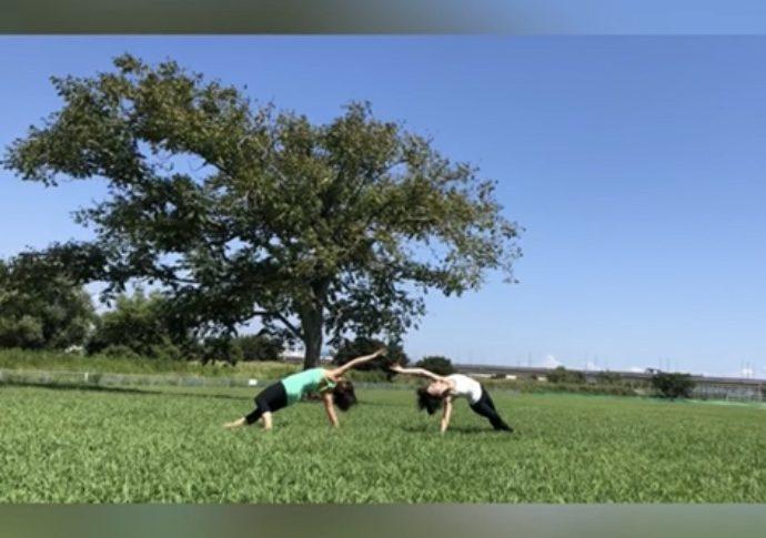 the Yang Aspect of Yin Yoga /陰ヨガの陽シークエンス